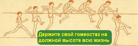1363201350_Klassifikaciya-vidov-pryz_1.jpg99